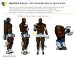 Brazo - Curl de Biceps alterno tipo martillo